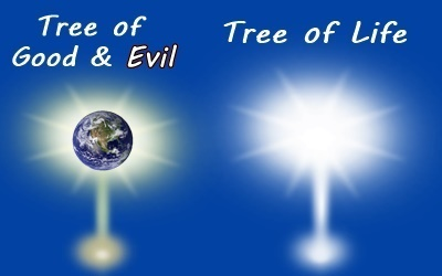 tree knowledge good evil life